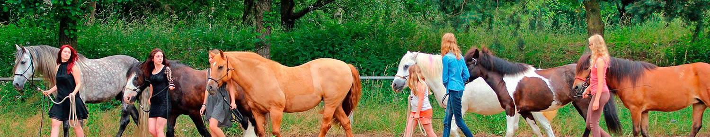 Pferdepolonese